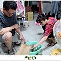 【烏龍狗生活】2012,11,11 膽小狗烏龍連花蟹也怕02