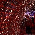 2013,03,09,6 朋友聚會【旅遊】新竹縣|2013台灣颩風會新竹燈會,燭光盛宴067