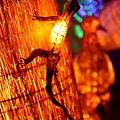 2013,03,09,6 朋友聚會【旅遊】新竹縣|2013台灣颩風會新竹燈會,燭光盛宴113
