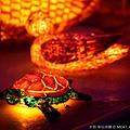 2013,03,09,6 朋友聚會【旅遊】新竹縣|2013台灣颩風會新竹燈會,燭光盛宴114
