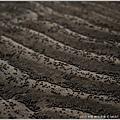 © 米特 味玩待敘|2013,03,09,6【FORD】福特試駕活動|跟著FOCUS到新竹看超浪漫的台灣燈會和南寮海灘014
