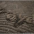 © 米特 味玩待敘|2013,03,09,6【FORD】福特試駕活動|跟著FOCUS到新竹看超浪漫的台灣燈會和南寮海灘013