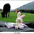 米特,味玩待敘 © MEAT|2011,10,29【遊記】台北陽明山擎天崗007