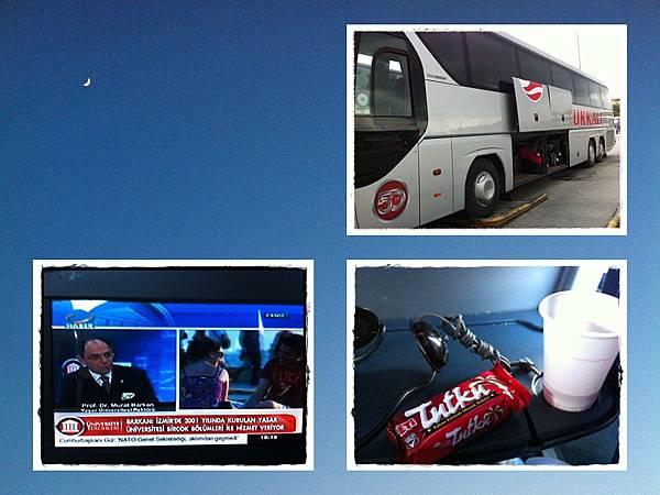 bus turkey