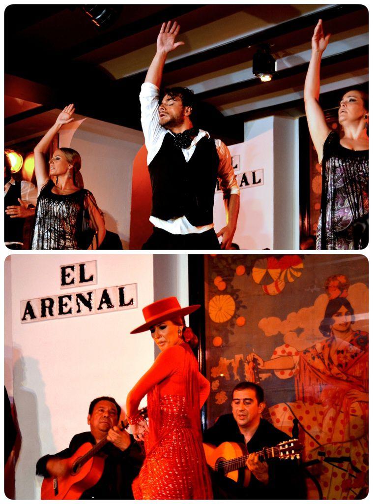 Flamenco-02