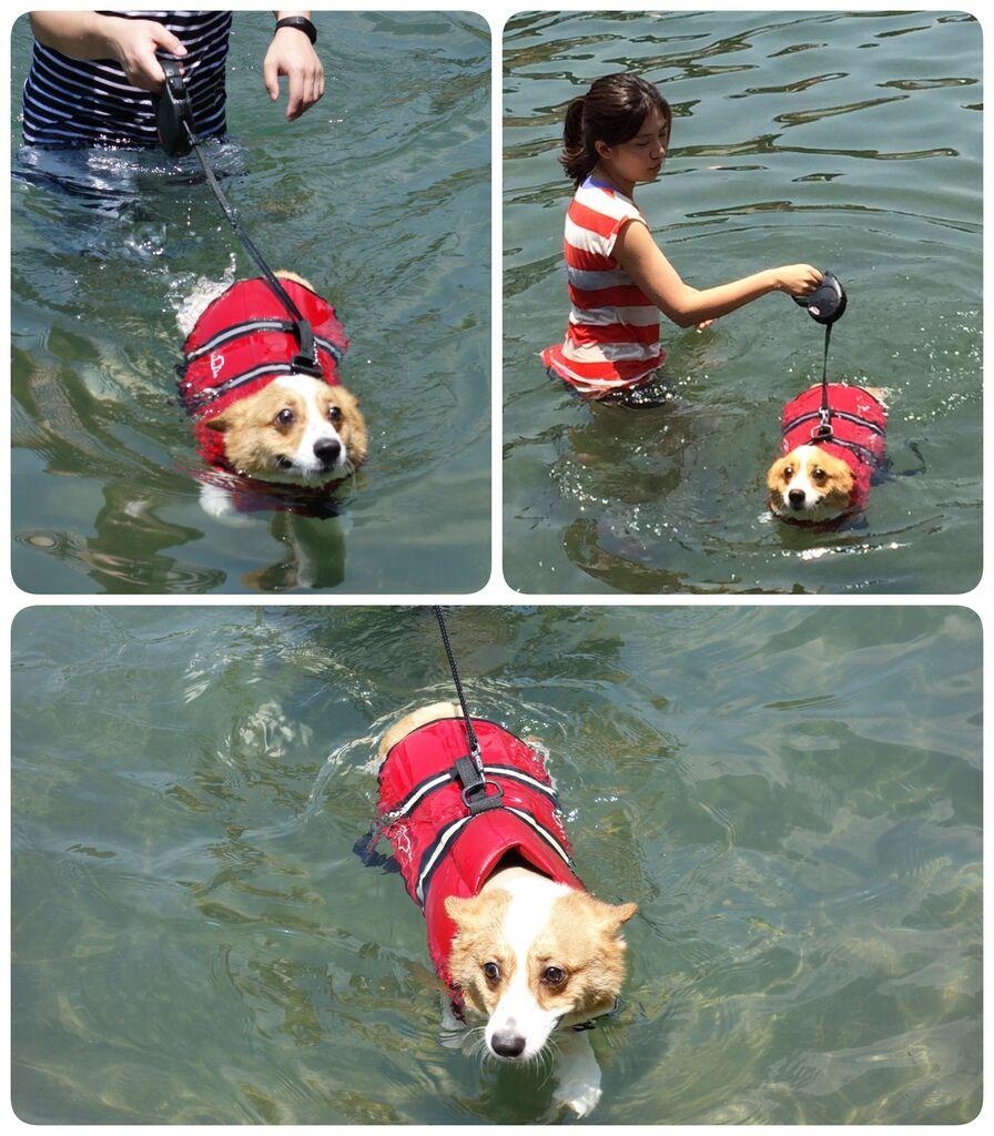 Swimming-03