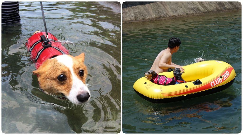 Swimming-04
