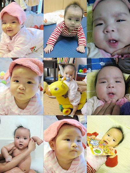 寶寶 5個月27天長牙齒.jpg