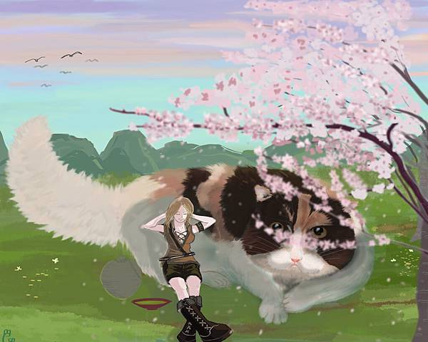 茶與貓20170726.jpg