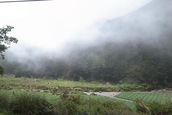 快到目的地時起霧了