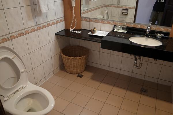 浴室長這樣