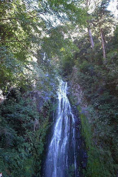 步道的終點:桃山瀑布