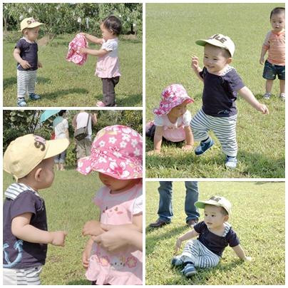 烏樹林草地玩耍.jpg