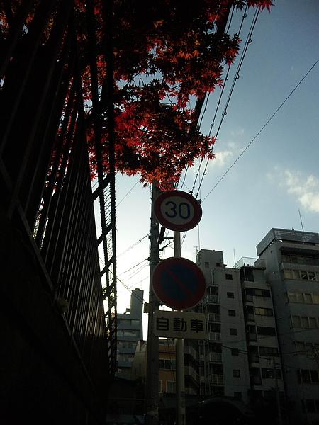 100417_165658.jpg