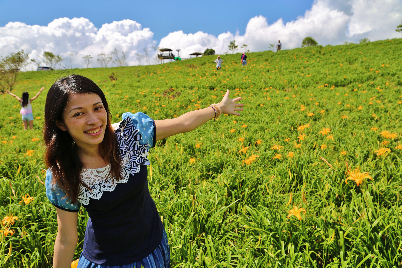 環島/六十石山/花東縱谷/親子環島2014金針花海/