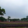 大溪花海農場(1)