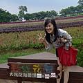 大溪花海農場(4)