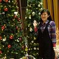老爺大飯店(4)-到處都有聖誕樹
