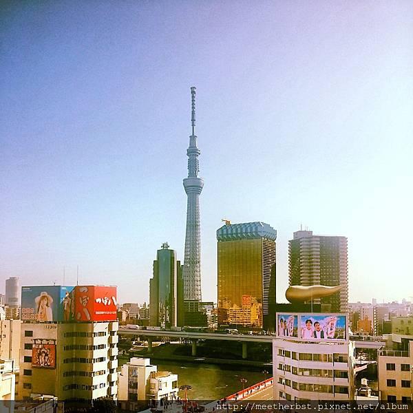 淺草文化觀光中心眺望天空樹
