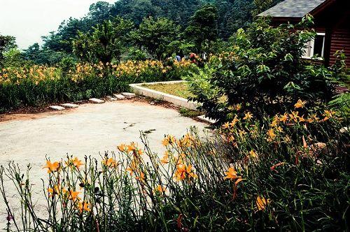 沐心泉花園-13.jpg