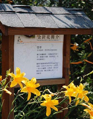 沐心泉花園-21.jpg
