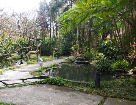 千樺花園-39.jpg