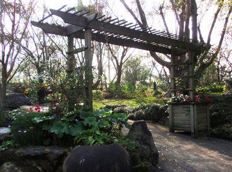 千樺花園-38.jpg