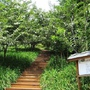 沐心泉花園-2.jpg