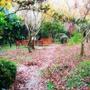 千樺花園-34.jpg