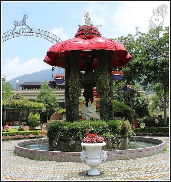MeetinTaiwan - Tai Yi Ecological Leisure Farm 台一生態休閒農場003.jpg
