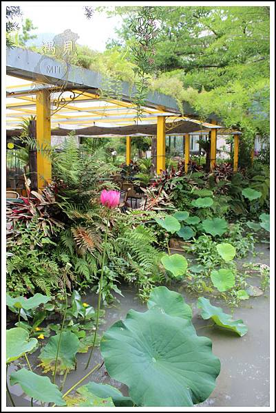 MeetinTaiwan - Tai Yi Ecological Leisure Farm 台一生態休閒農場007.jpg
