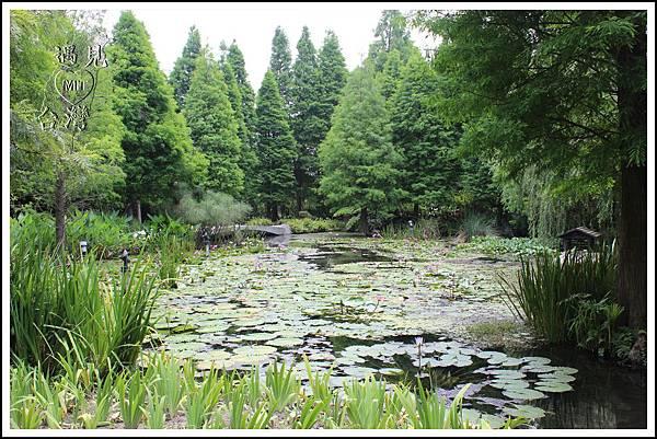 MeetinTaiwan - TenWay Garden 菁芳園04.jpg