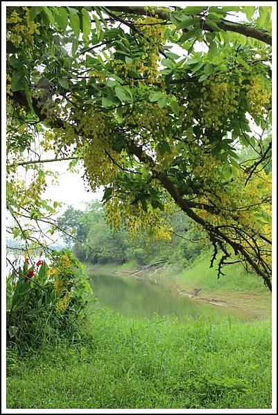 MeetinTaiwan - Hu-To Pei 虎頭埤水庫21.jpg