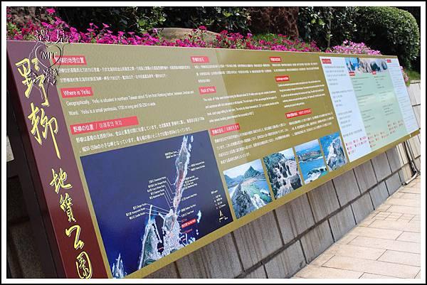 MeetinTaiwan - Yeh Liu GeoPark 野柳地質公園06.jpg