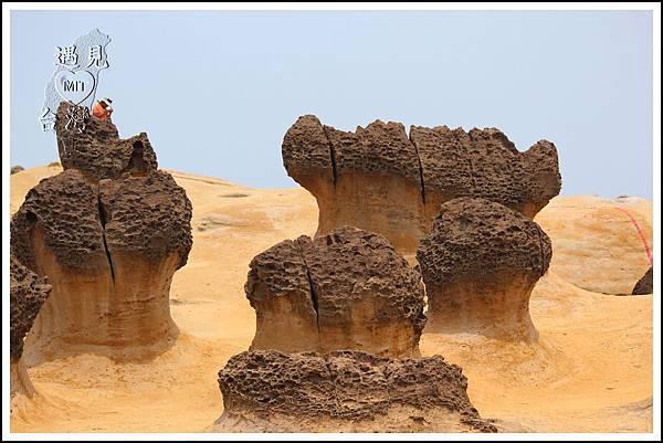 MeetinTaiwan - Yeh Liu GeoPark 野柳地質公園18.jpg
