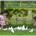 MeetinTaiwan -  Promised Land Resort & Lagoon 21.jpg
