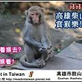 MeetinTaiwan -  Chai Shan 01.jpg