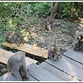 MeetinTaiwan -  Chai Shan 12.jpg