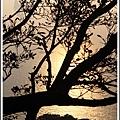 MeetinTaiwan -  Chai Shan 101.jpg