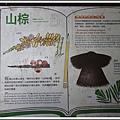 MeetinTaiwan -  Chai Shan 120.jpg