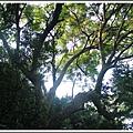 MeetinTaiwan -  Chai Shan 121.jpg