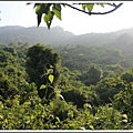 MeetinTaiwan -  Chai Shan 124.jpg