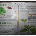 MeetinTaiwan -  Chai Shan 129.jpg
