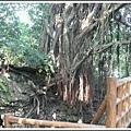 MeetinTaiwan -  Chai Shan 152.jpg