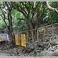 MeetinTaiwan -  Chai Shan 154.jpg