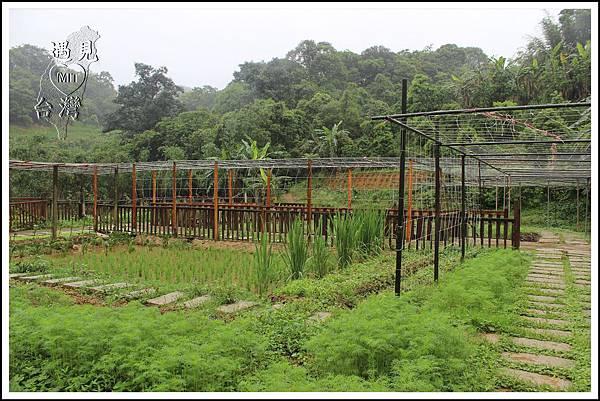 MeetinTaiwan-Sheng De 盛德農莊 15.jpg