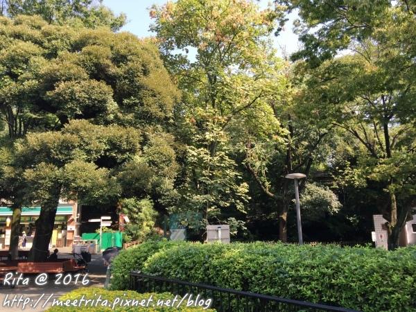 Tokyo-4.JPG