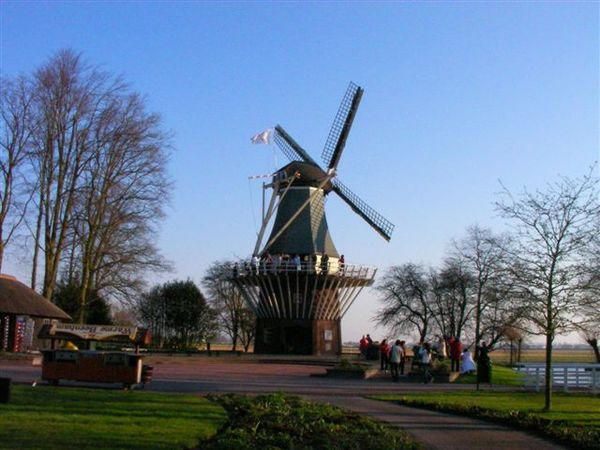 庫肯霍夫花園-風車