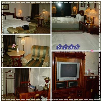 cats-hotel22.jpg