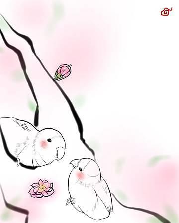 愛情鳥paint 臉紅